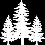 Simnitt House and Home Trees