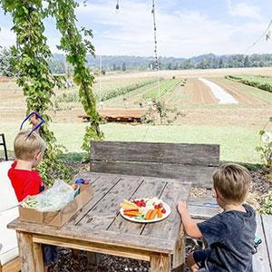 Boys enjoy Minto Island Growers in Salem, Oregon
